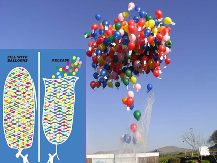 200 Balloon Release Net Buy Helium Balloons Delivery Globos