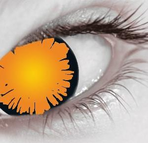 buy Blind Twilight Bella (1 Day Use) Eye Accessory