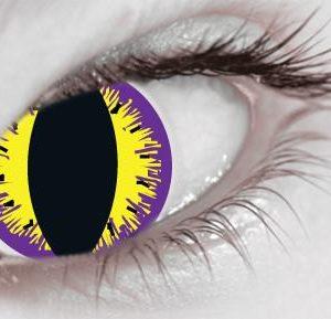 buy Purple Kitty (1 Day Use) Eye Accessory