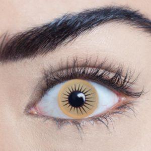 Zombie Dawn (1 Day Use) Eye Accessory